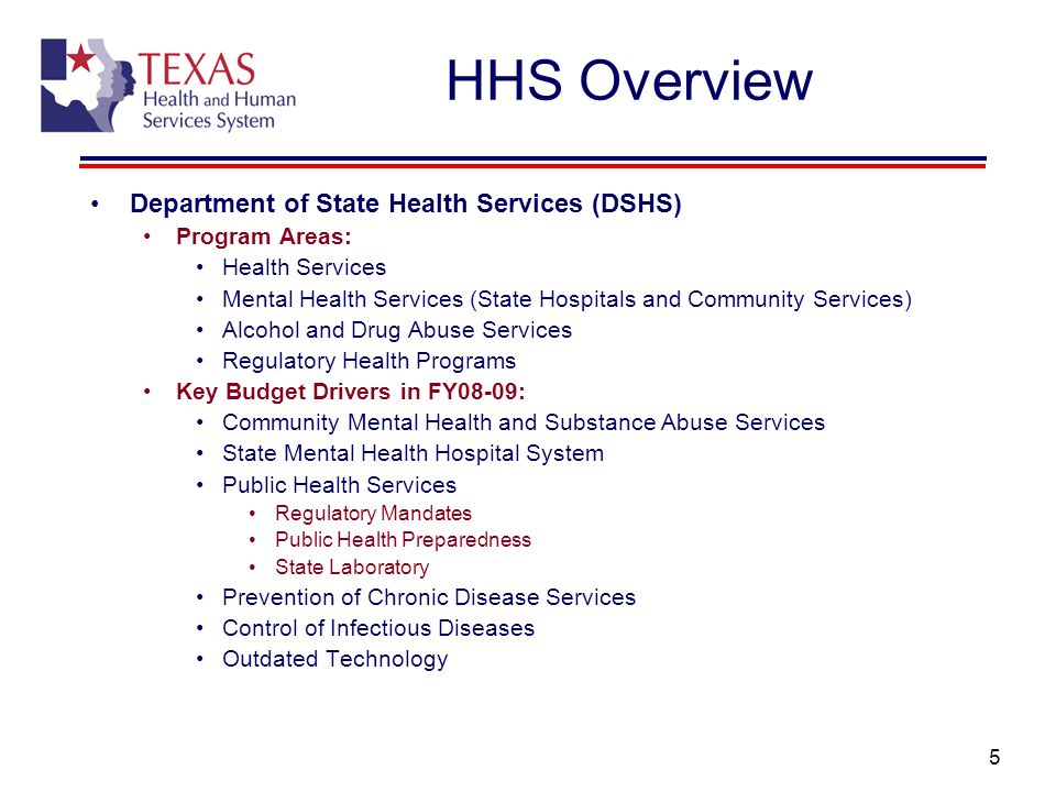 HHS Overview Department of State Health Services (DSHS) Program Areas: