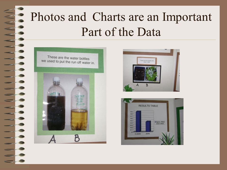 Photos and Charts are an Important Part of the Data