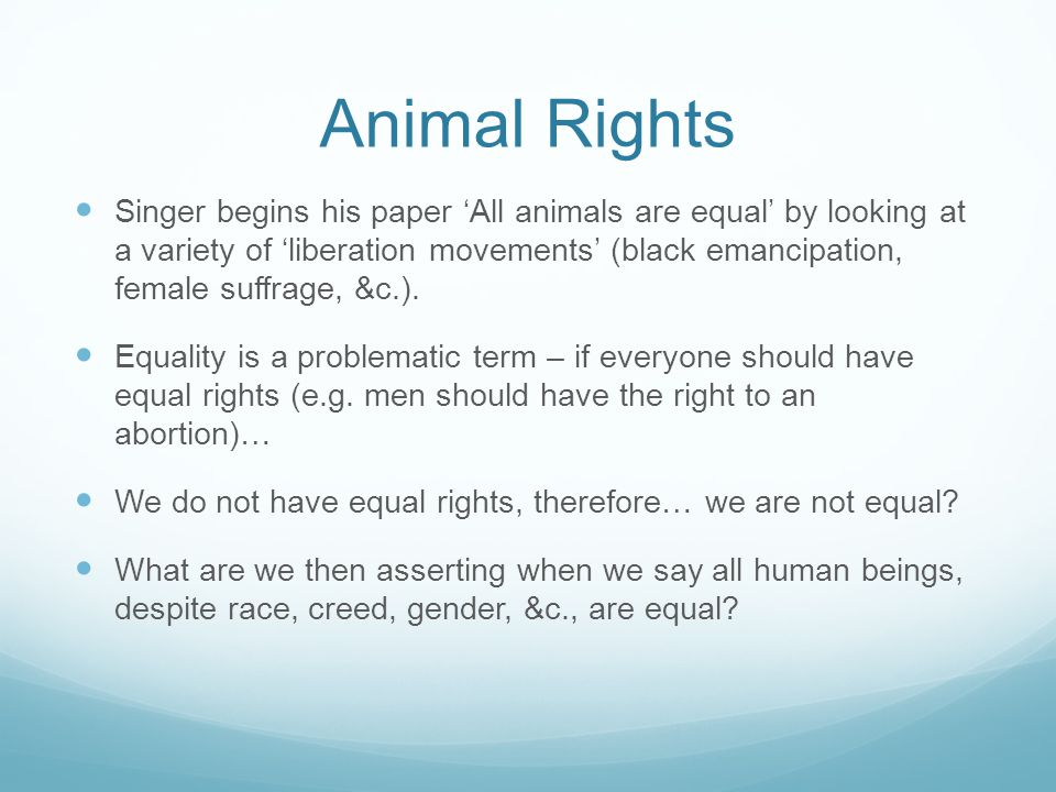 do animals have rights essay animals have rights essay pevita should animals have rights essay essay help animals have rights essay pevita should animals have rights essay essay help