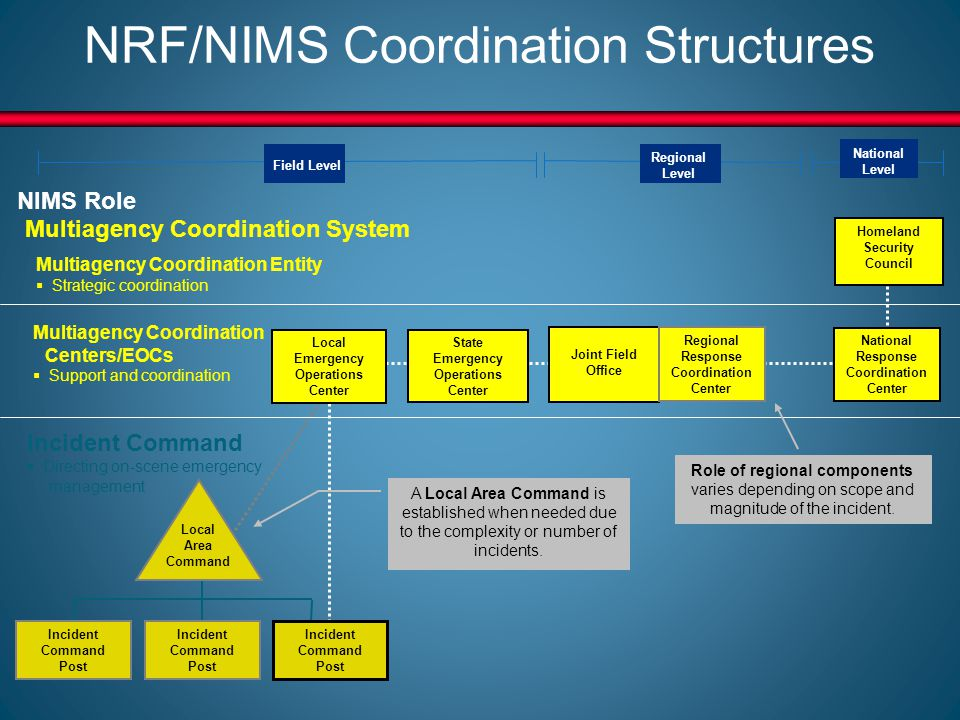 the role and responsibilities of responding emergency services during major incidents in the nrf sev Doctrine, organization, roles and responsibilities, response actions and planning requirements that guide annexes essential supporting aspects of the federal response common to all incidents emergency support ngos play an enormous role in emergency management before, during and after.