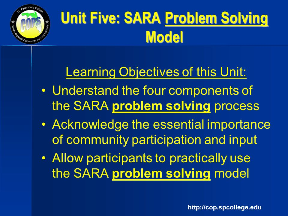 Problem solving partnerships using the SARA model Essay Sample
