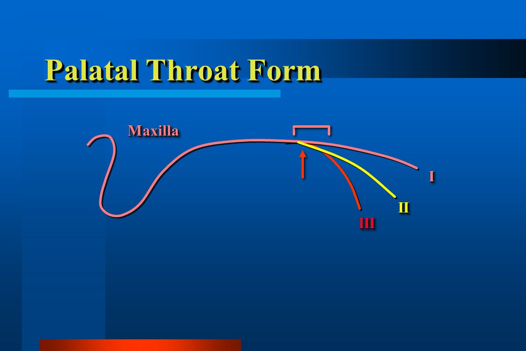 Palatal Throat Form Maxilla I II III