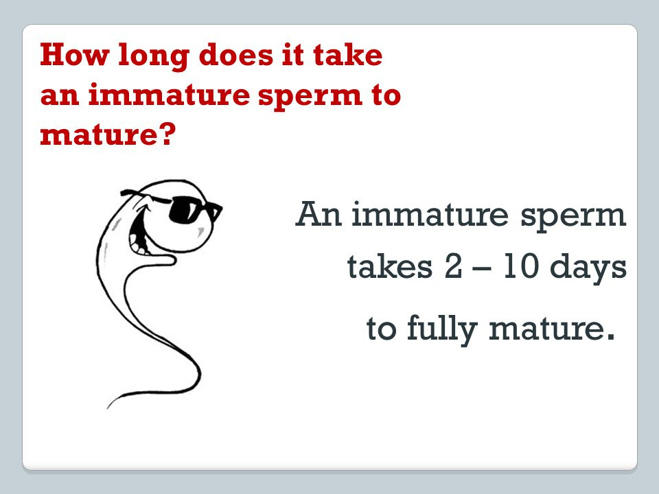 An immature sperm takes 2 – 10 days to fully mature.
