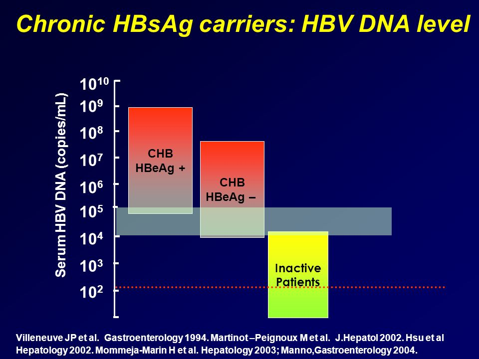 Chronic HBsAg carriers: HBV DNA level