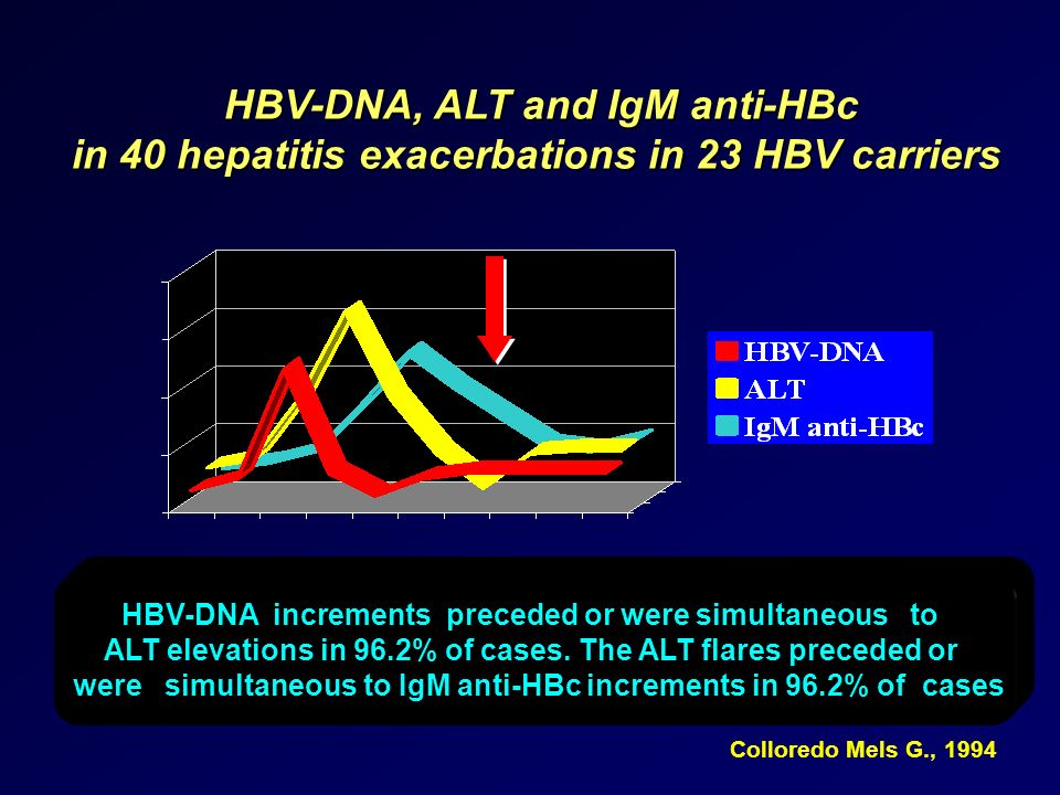 HBV-DNA, ALT and IgM anti-HBc