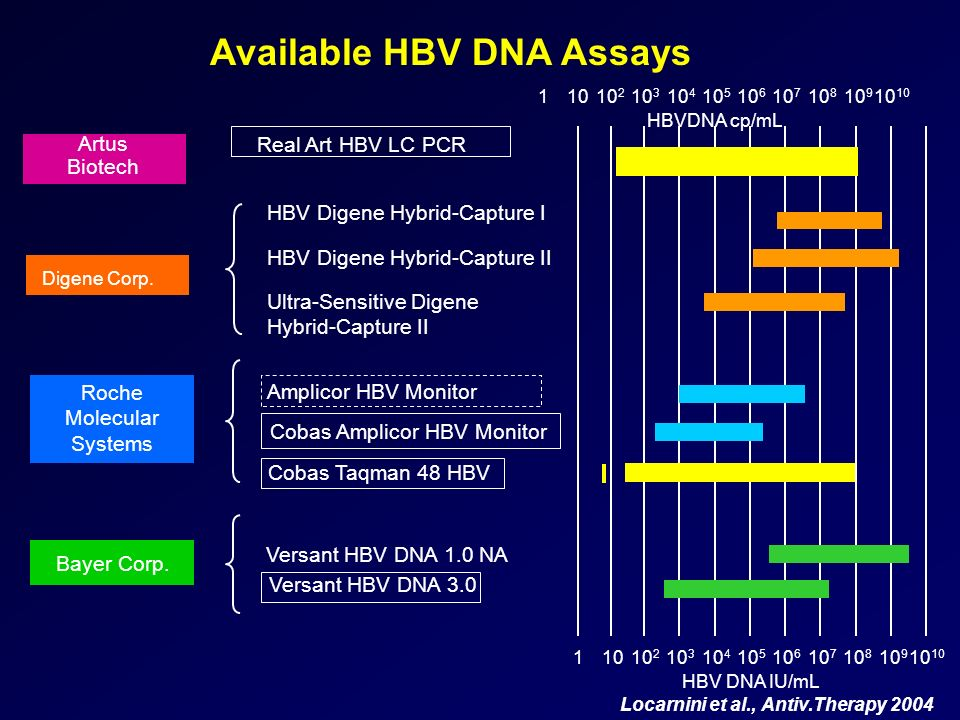 Available HBV DNA Assays