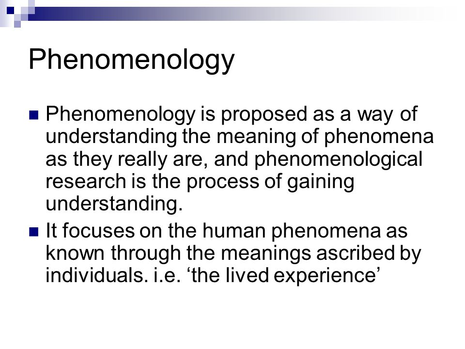 Phenomenology and Ethnomethodology