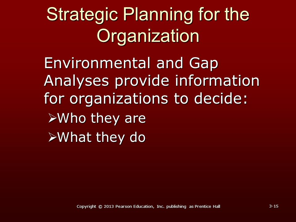 Strategic Planning for the Organization