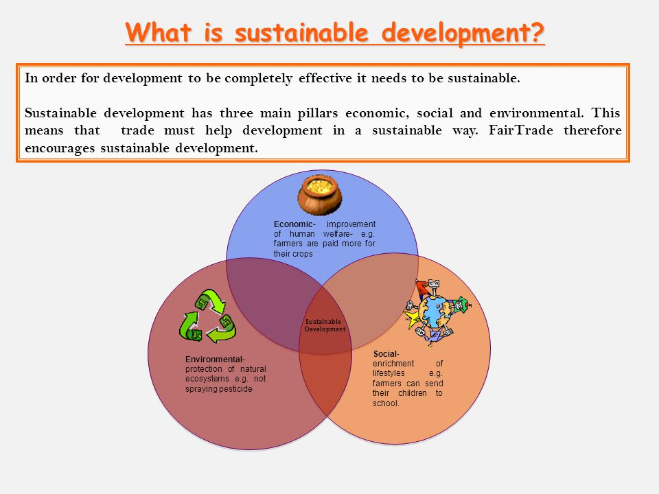 three pillars of sustainable development pdf