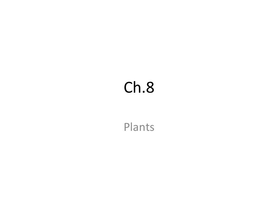 Ch.8 Plants