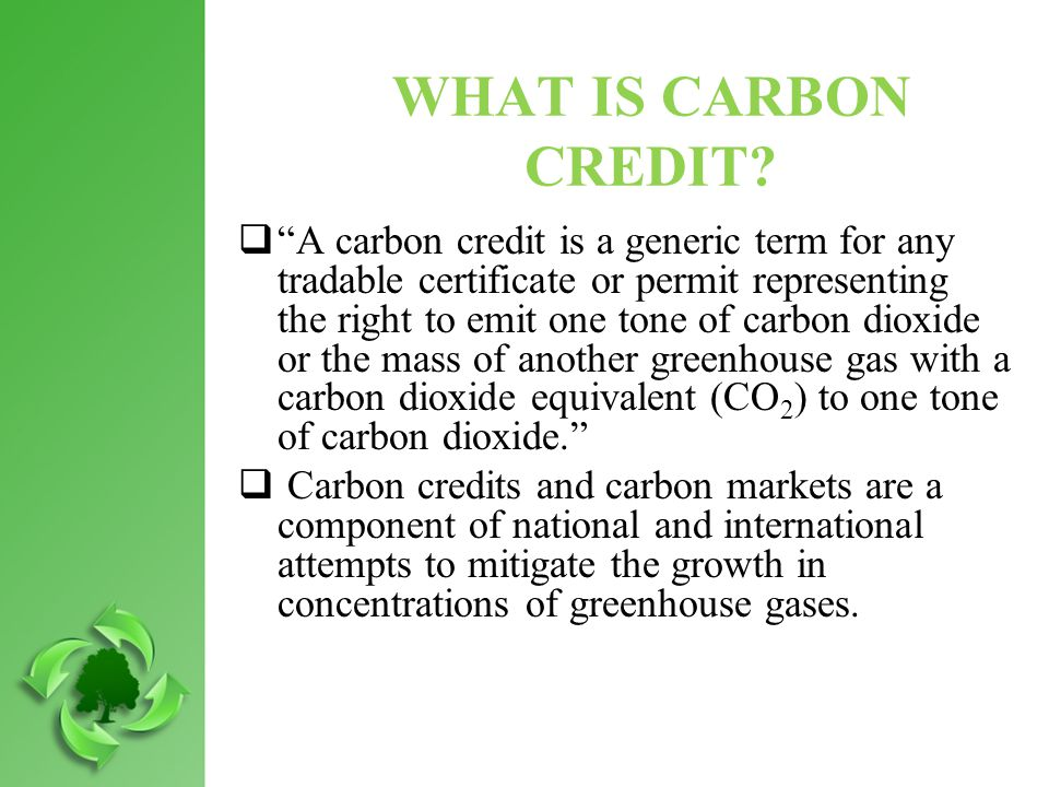 WHAT IS CARBON CREDIT