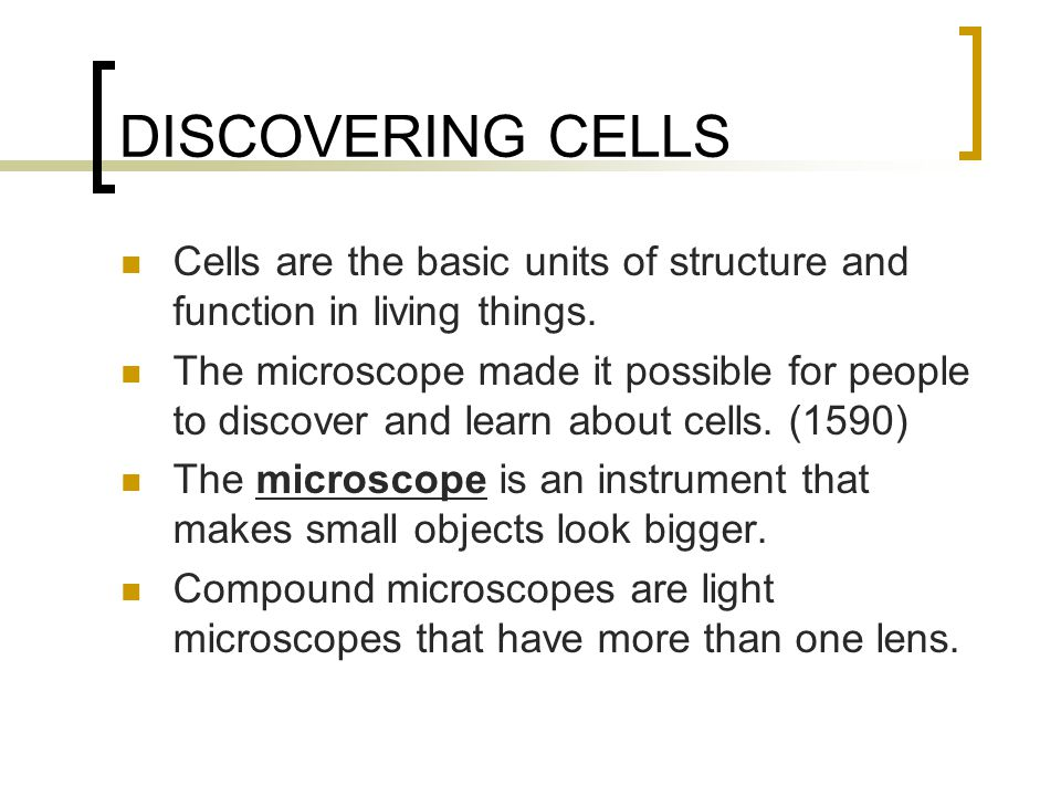 DISCOVERING CELLS Cells are the basic units of structure and function in living things.