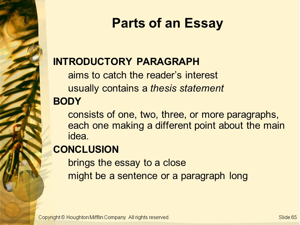 Identify the different parts of an essay