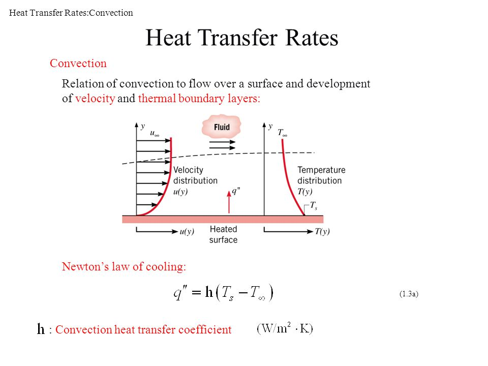 Heat Transfer Rates:Convection