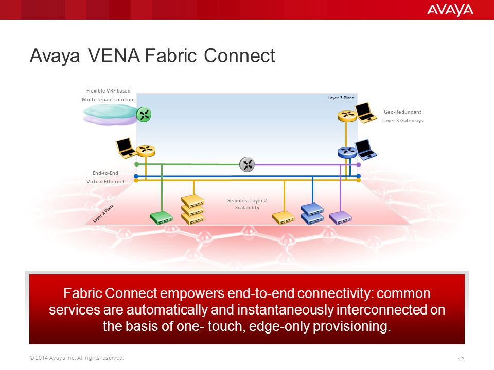 Avaya VENA Fabric Connect