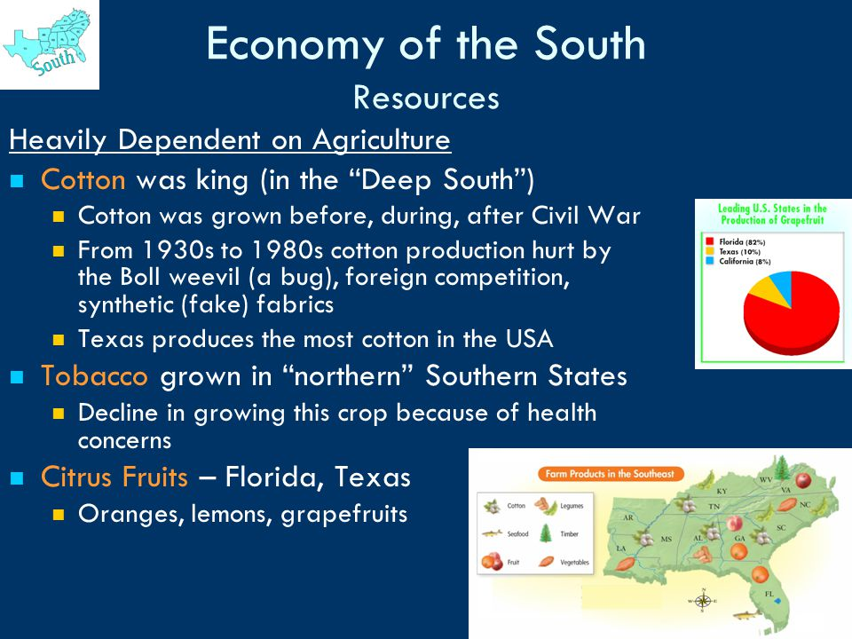 the effect of cotton economy on the economy of the united states Chapter 12 the dynamics of growth true/false 1  page 452 top: the importance of cotton to the economy  the united states had caught up with britain's textile .