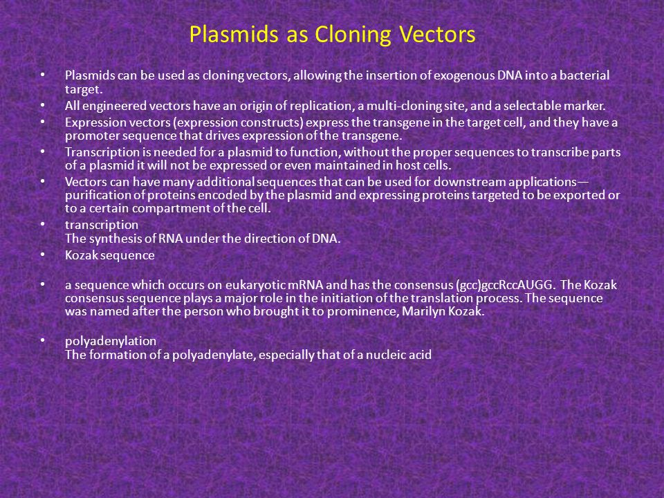 Plasmids as Cloning Vectors