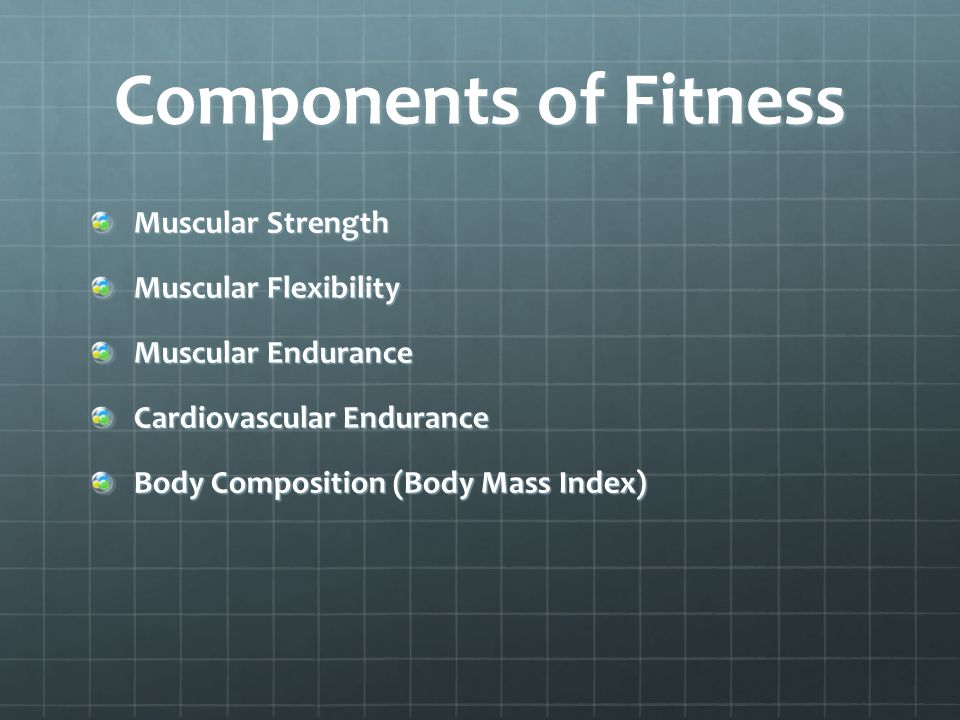 Components of Fitness Muscular Strength Muscular Flexibility