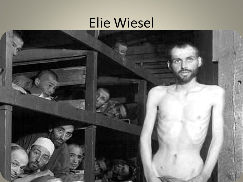 depiction of the horrors of holocaust in elie wiesels night When he was 15 years old, elie wiesel was sent to auschwitz he later documented his experiences in concentration camps in the classic book night in 2006, he returned to the death camp with oprah to reflect on the staggering loss of life and search for lessons in the dark legacy of the holocaust.