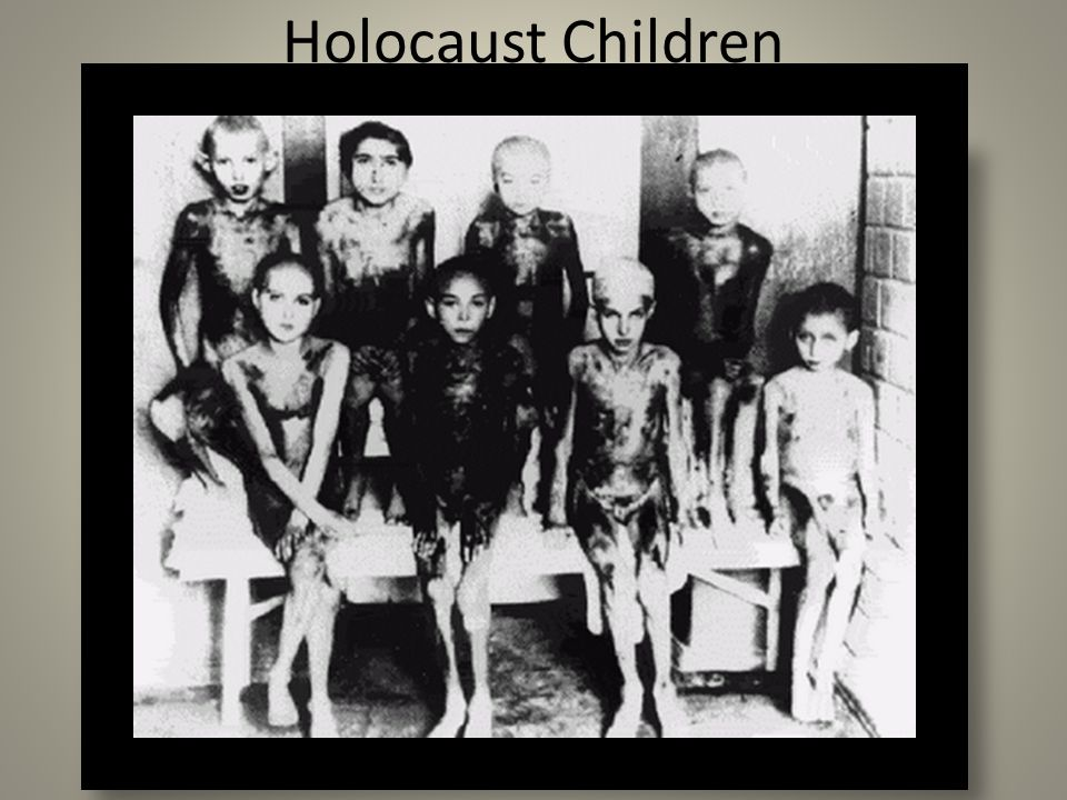 children of the holocaust essays Thousands of jewish children survived the holocaust because they were protected by people and institutions of other faiths.