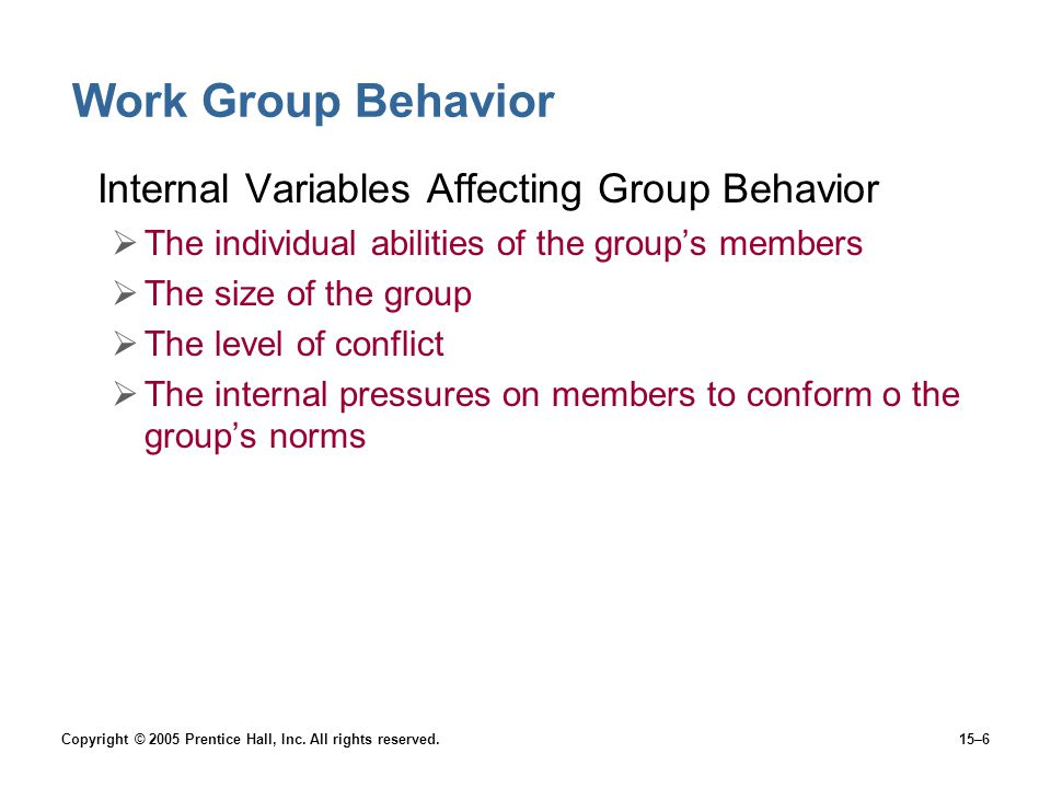Work Group Behavior Internal Variables Affecting Group Behavior