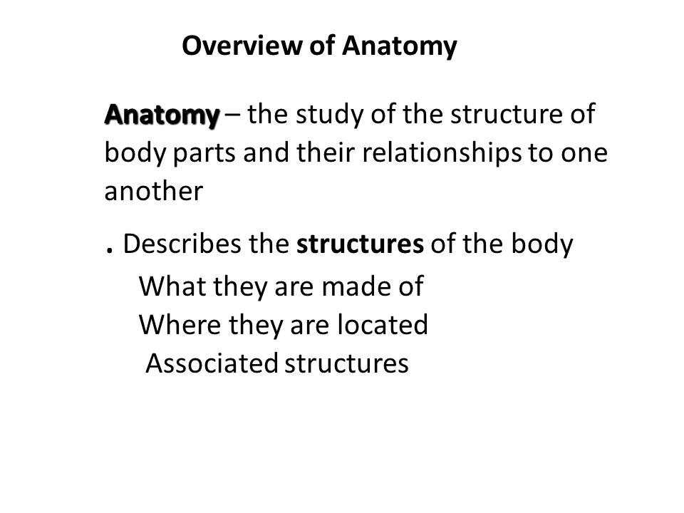 . Describes the structures of the body