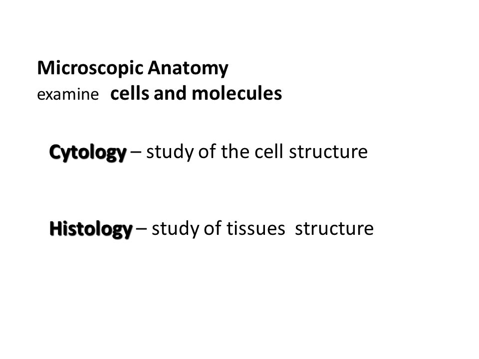 Cytology – study of the cell structure