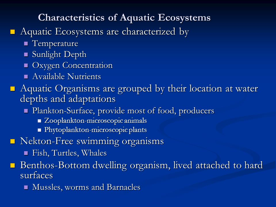 adaptive features of aquatic plants and animals Find facts and tips on aquatic plants and flowers at proflowers from functions to physical characteristics and adaptation, we have.