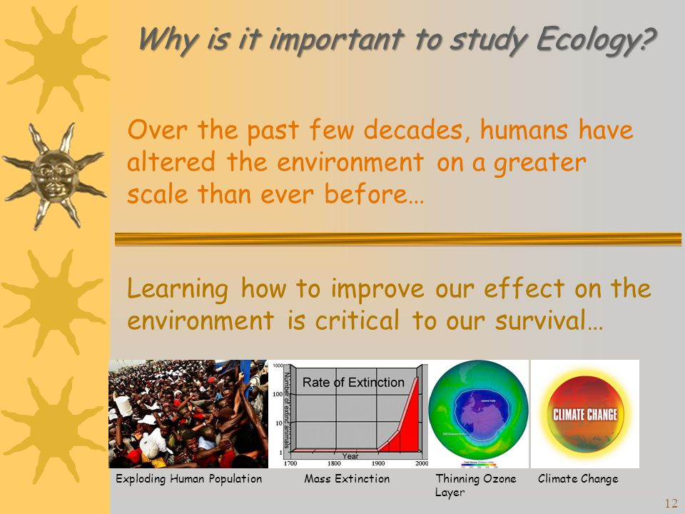 a literary analysis of ecology or the art of survival Human ecology is the discipline that inquires into the patterns and process of interaction of humans with their environments human values, wealth, life-styles, resource use, and waste, etc must affect and be affected by the physical and biotic environments along urban-rural gradients.