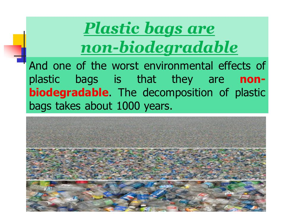 "is plastic bad for the environment In defense of the plastic bag  ""we're trying to stop the plastic impact on the marine environment plastic doesn't i don't feel bad about."