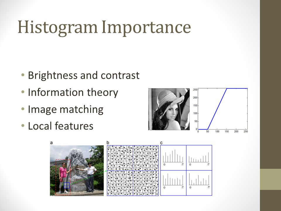 Histogram Importance Brightness and contrast Information theory