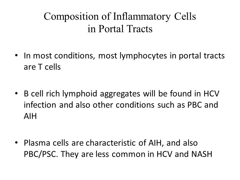Composition of Inflammatory Cells in Portal Tracts