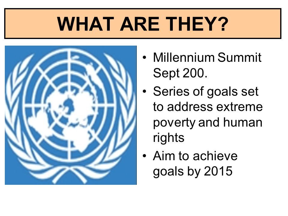 WHAT ARE THEY Millennium Summit Sept 200.