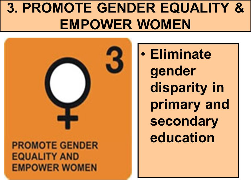 3. PROMOTE GENDER EQUALITY & EMPOWER WOMEN