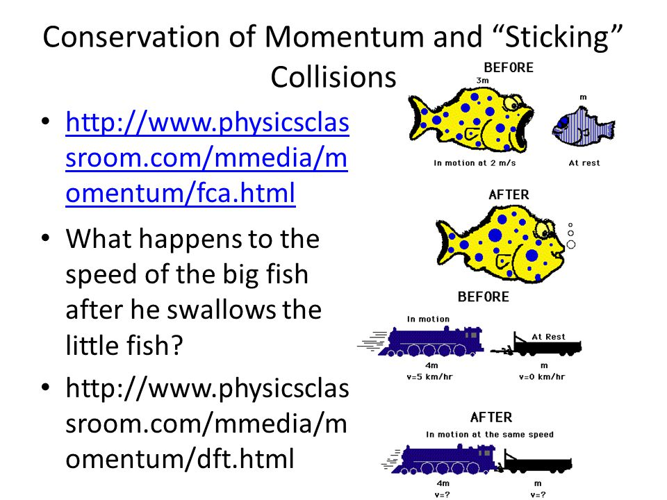 collisions and conservation of momentum Momentum, impulse, and collisions – internal forces do not break momentum conservation conservation of momentum for a closed system (no external forces), by.
