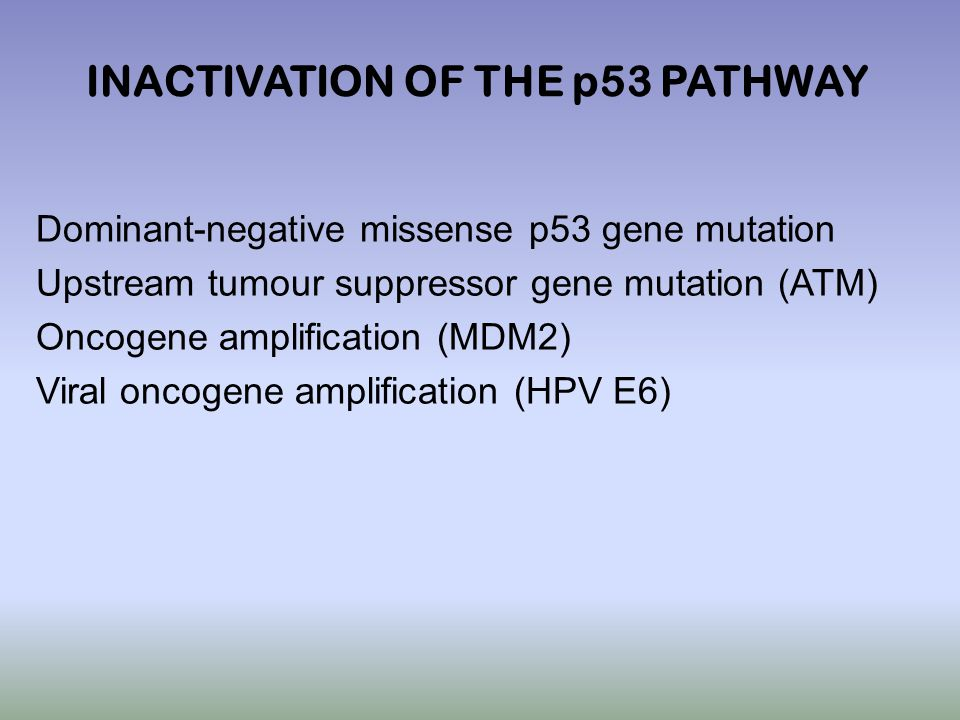 P53 Has A Key Role In Integrating The Cellular Responses