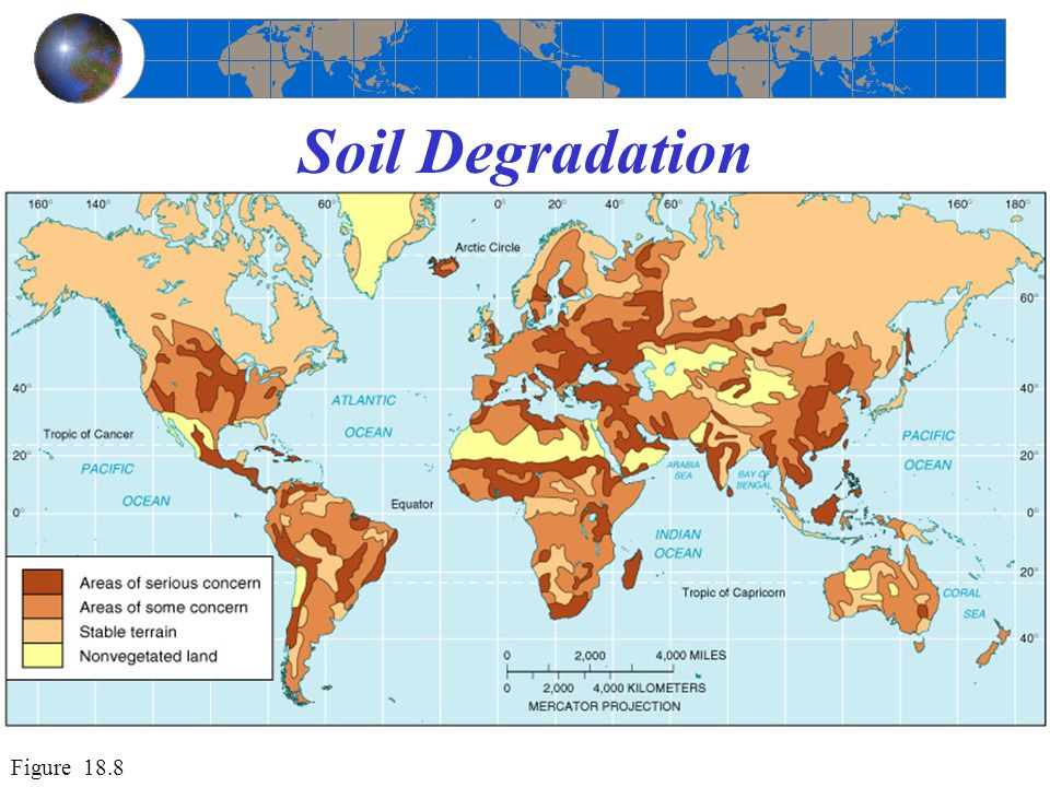 Geography soil conservation