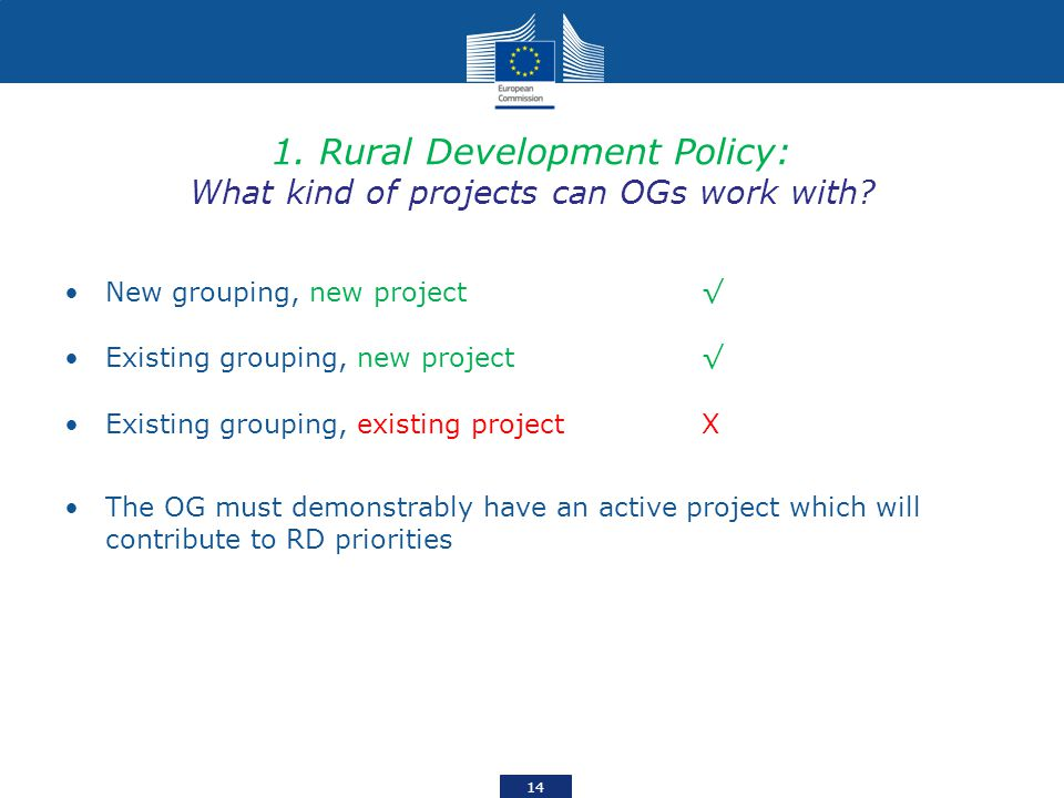 1. Rural Development Policy: What kind of projects can OGs work with