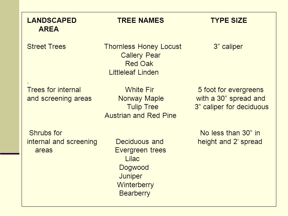LANDSCAPED TREE NAMES TYPE SIZE