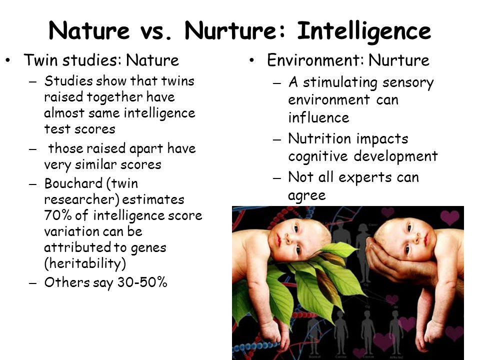 is intelligence nature or nurture The debate of nature versus nurture in the role of intelligence has been an ongoing debate for quite a while now many people believe that genes are responsible for a person's innate abilities while this is certainly true, an uncongenial environment would hinder the development of those abilities.