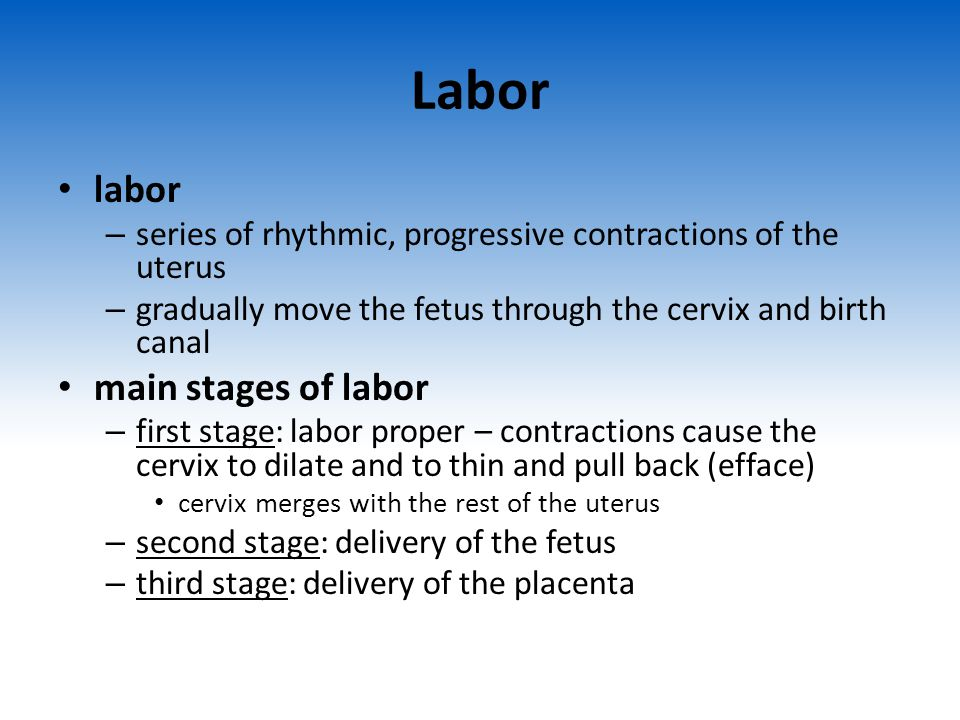 Labor labor main stages of labor