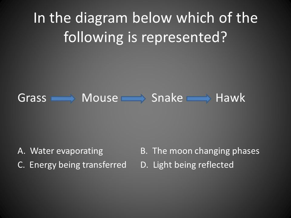 In the diagram below which of the following is represented