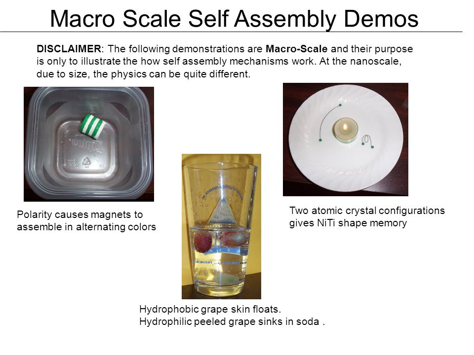 Nanofabrication self assembly ppt download for Perfect scale pro review