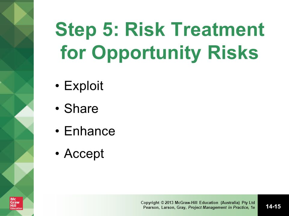 Step 5: Risk Treatment for Opportunity Risks