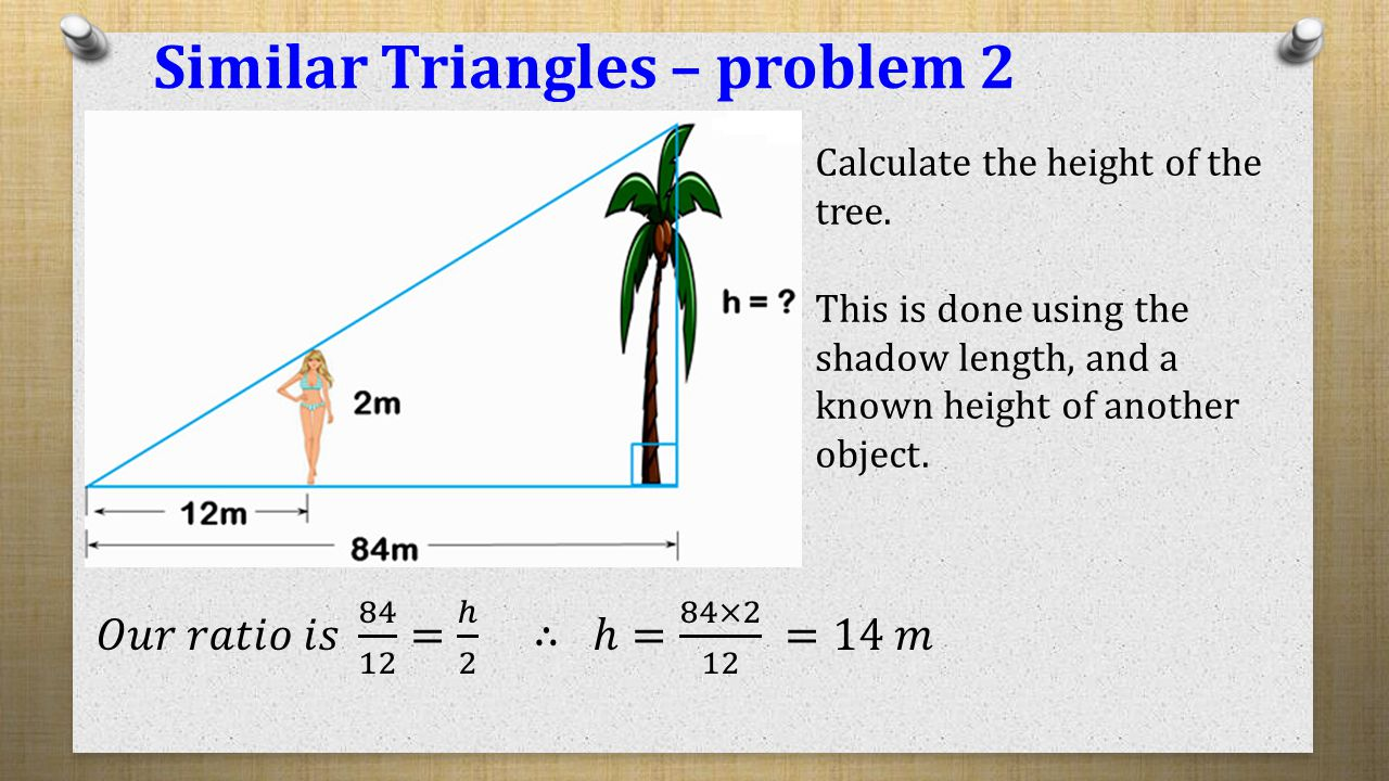 similar triangles  polygons