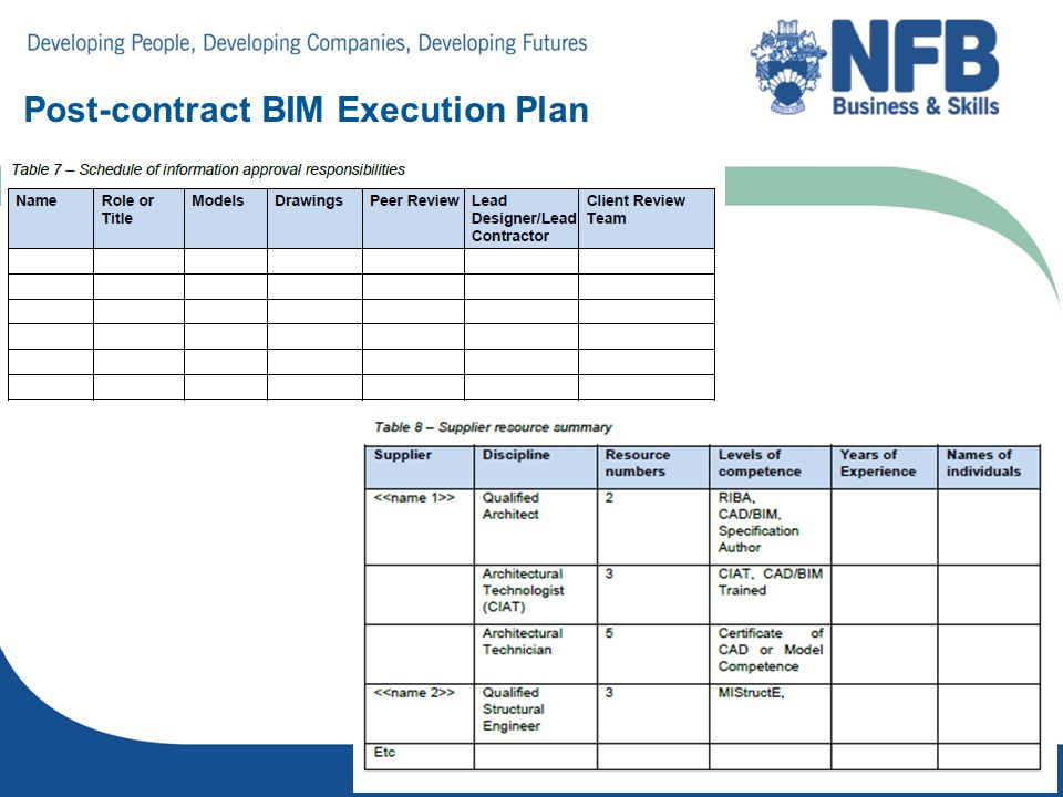 project execution plan construction pdf