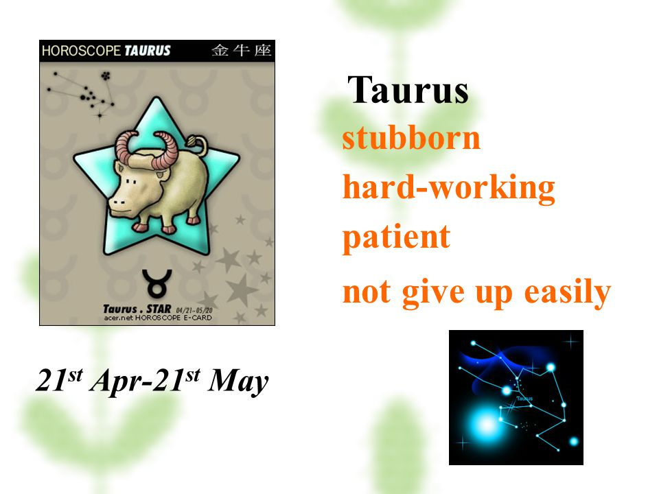 Taurus stubborn hard-working patient not give up easily