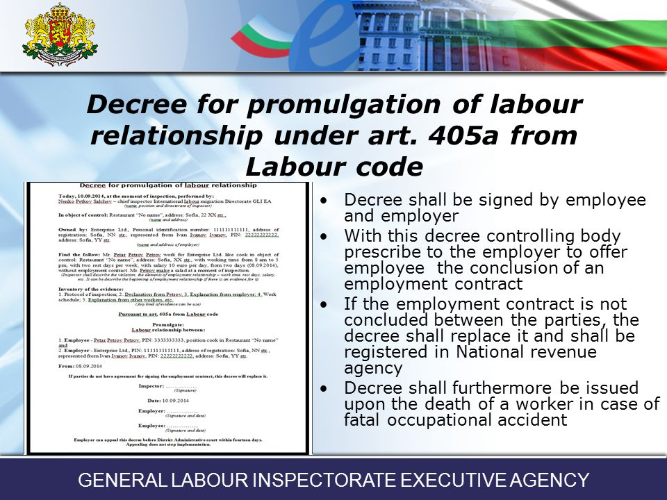 General Labour Inspectorate Executive Agency  Ppt Download