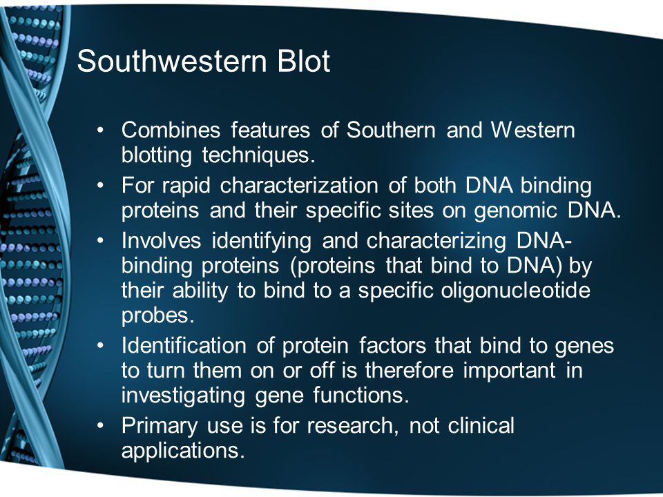 Southwestern Blot Combines features of Southern and Western blotting techniques.