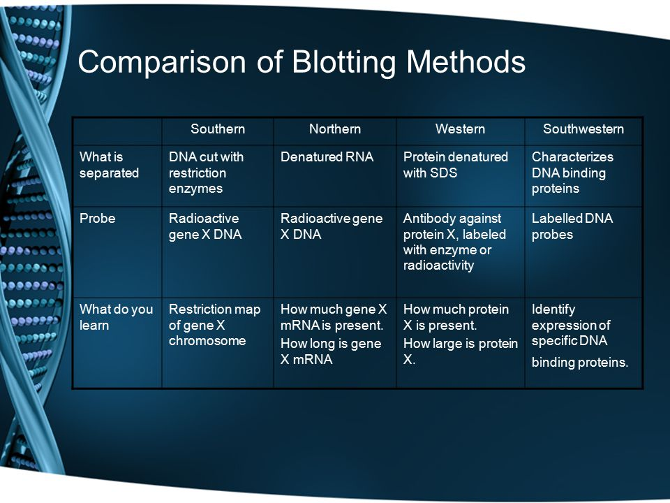 Comparison of Blotting Methods